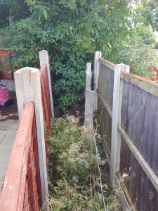 Original boundary fence posts visible between two newer fences